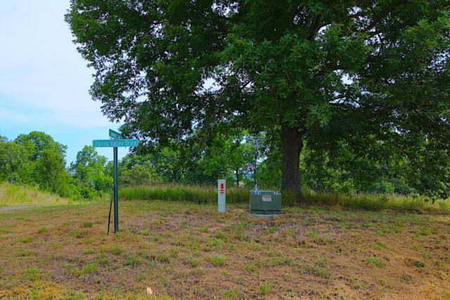 Lot 7a Riverside Ridge Estates, Mammoth Spring, AR 72554 (MLS #60121129) :: Team Real Estate - Springfield