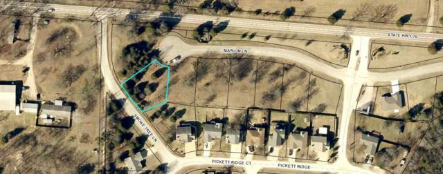 165 W Marion Lane, Kirbyville, MO 65679 (MLS #60121143) :: Team Real Estate - Springfield
