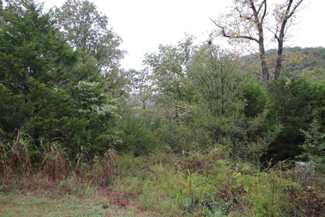 Lot 2 Silver Oak Way, Reeds Spring, MO 65737 (MLS #60121156) :: Team Real Estate - Springfield