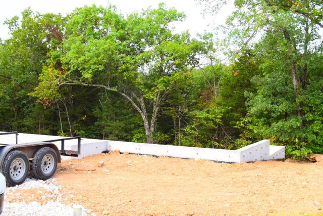 255 Deep Forest, Hollister, MO 65672 (MLS #60121220) :: Team Real Estate - Springfield