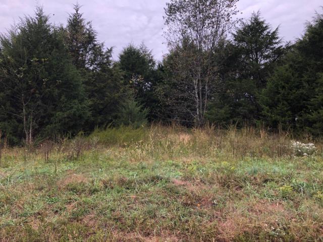 0 James River Ranch Lot 49, Crane, MO 65633 (MLS #60121491) :: Team Real Estate - Springfield