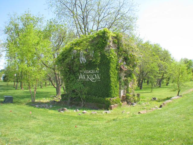 Lot 81 Village Of Roundwood, Nixa, MO 65714 (MLS #60121536) :: Team Real Estate - Springfield