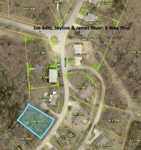 Lot 22 Skyline Drive, Kimberling City, MO 65686 (MLS #60121711) :: Good Life Realty of Missouri