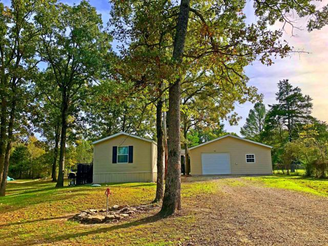 308 Mill Hollow Road, Forsyth, MO 65653 (MLS #60122016) :: Good Life Realty of Missouri
