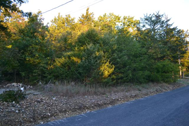 Lot 2 Oak, Kimberling City, MO 65686 (MLS #60122023) :: Weichert, REALTORS - Good Life