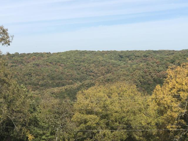 Lot 9,10 Irish Hill Estates, Kimberling City, MO 65686 (MLS #60122416) :: Team Real Estate - Springfield