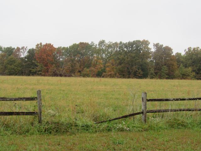 000 County Road 316, Urbana, MO 65767 (MLS #60122440) :: Team Real Estate - Springfield