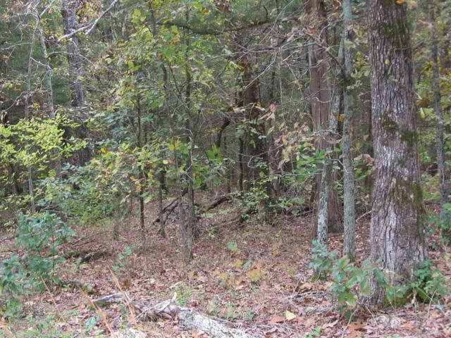 Lot 15 Eagles Bluff Estates, Shell Knob, MO 65747 (MLS #60122479) :: Sue Carter Real Estate Group