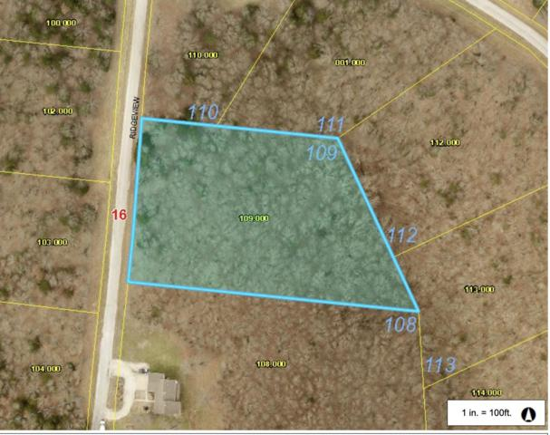 Lot 109 Ridgeview Point, Cape Fair, MO 65624 (MLS #60122624) :: Team Real Estate - Springfield