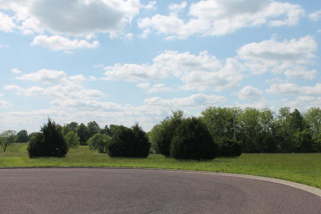 Lot 17 Pier Lane, Monett, MO 65708 (MLS #60122640) :: Team Real Estate - Springfield