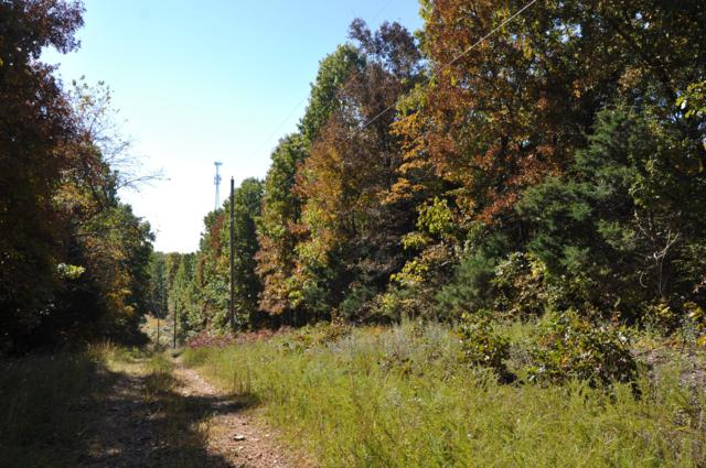 Tbd Lot5 Bittersweet Lane, Ridgedale, MO 65739 (MLS #60122646) :: Team Real Estate - Springfield