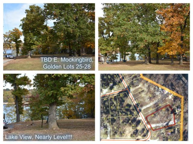 Tbd E Mockingbird, Lots 25,26,27,28 Road, Golden, MO 65658 (MLS #60122677) :: Weichert, REALTORS - Good Life