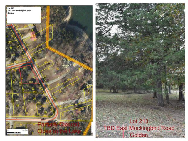 Tbd E Mockingbird, Lot 213 Road, Golden, MO 65658 (MLS #60122684) :: Weichert, REALTORS - Good Life