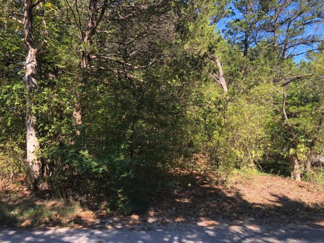 Tbd Lots 44 And 45 Midway Rd, Cape Fair, MO 65624 (MLS #60122700) :: Good Life Realty of Missouri