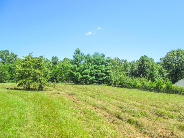 Tbd Forest Drive, Theodosia, MO 65761 (MLS #60122810) :: Good Life Realty of Missouri