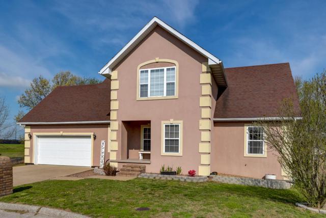 533 Sleepy Meadow Drive, Mt Vernon, MO 65712 (MLS #60122957) :: Team Real Estate - Springfield