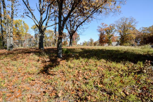 189 N Ridge Place, Branson, MO 65616 (MLS #60123166) :: Team Real Estate - Springfield