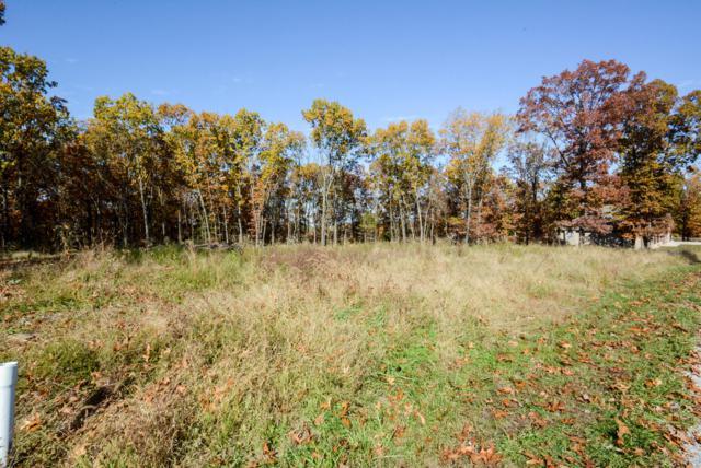 217 N Ridge Place, Branson, MO 65616 (MLS #60123167) :: Team Real Estate - Springfield