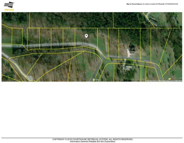 Lot 113 Valley Drive, Saddlebrooke, MO 65630 (MLS #60123328) :: Team Real Estate - Springfield