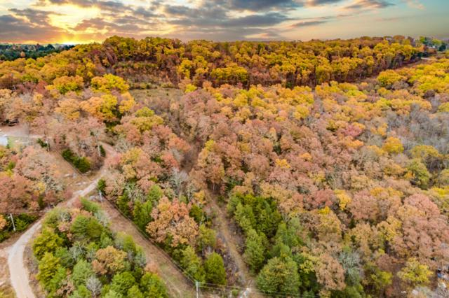 Lot 36 Eta Avenue, Galena, MO 65656 (MLS #60123413) :: Sue Carter Real Estate Group