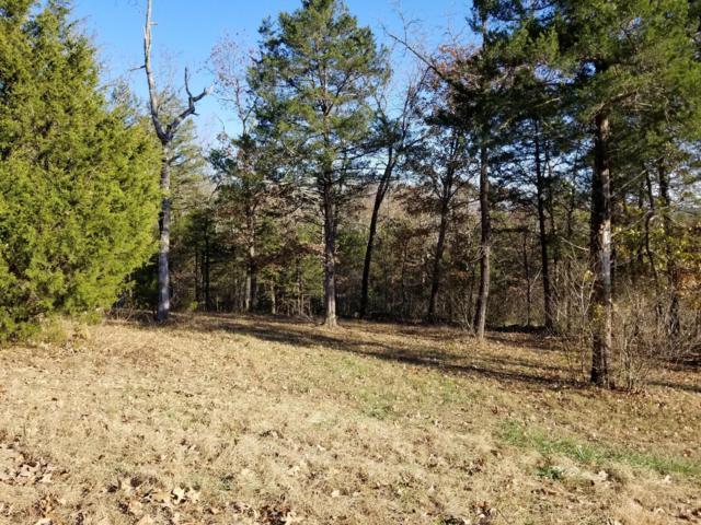109 Ranch Road, Saddlebrooke, MO 65630 (MLS #60123671) :: Team Real Estate - Springfield