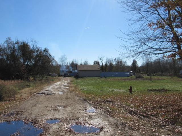 975 Victoria Street, Marshfield, MO 65706 (MLS #60123686) :: Good Life Realty of Missouri