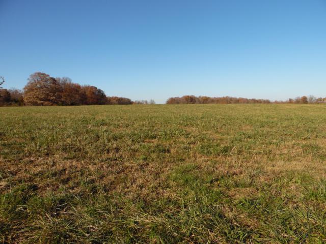 Tbd/Tr-A Farm Rd. 2015, Aurora, MO 65605 (MLS #60123718) :: Team Real Estate - Springfield