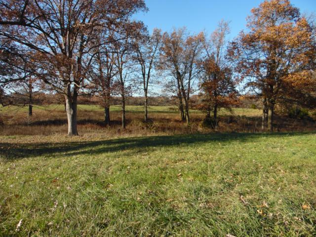 Tbd/Tr-B Farm Rd. 2015, Aurora, MO 65605 (MLS #60123721) :: Team Real Estate - Springfield