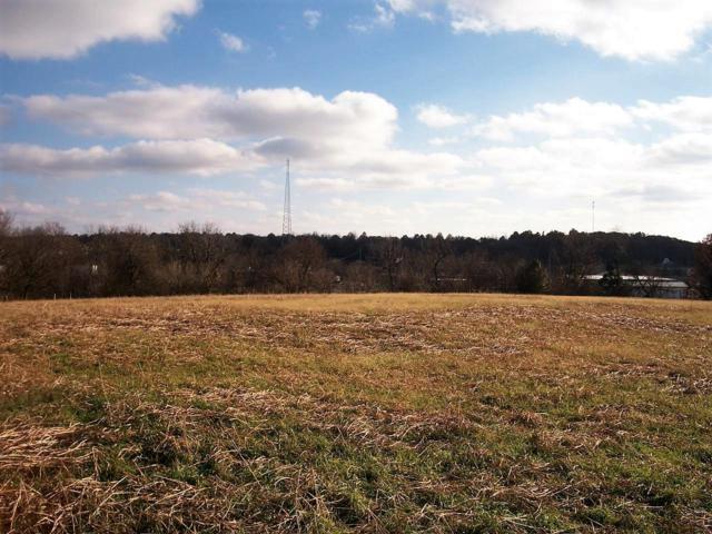 Tbd Diane Lane, Monett, MO 65708 (MLS #60123844) :: Good Life Realty of Missouri