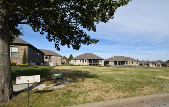 599 E Selby Drive, Nixa, MO 65714 (MLS #60123860) :: Team Real Estate - Springfield