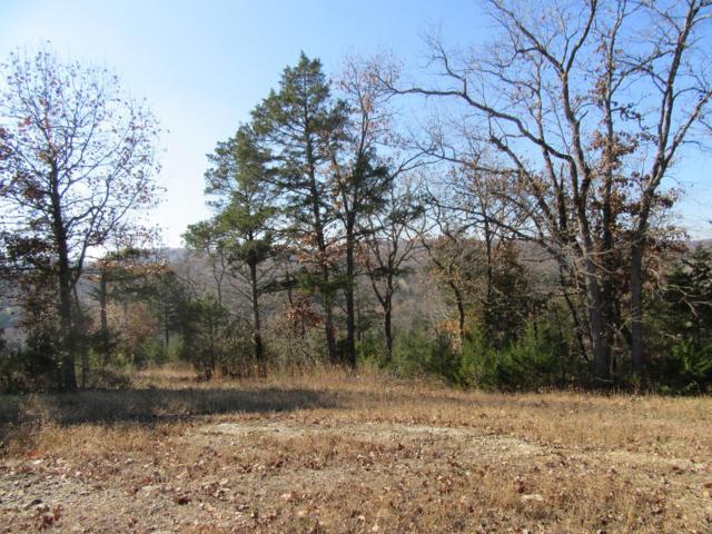 153 Ranch Road, Saddlebrooke, MO 65630 (MLS #60123893) :: Team Real Estate - Springfield