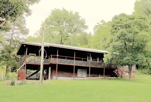 110 Bubba Drive, Gainesville, MO 65655 (MLS #60124045) :: Team Real Estate - Springfield