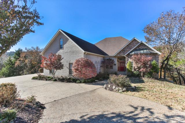112 Summerwood Drive, Branson, MO 65616 (MLS #60124058) :: Sue Carter Real Estate Group
