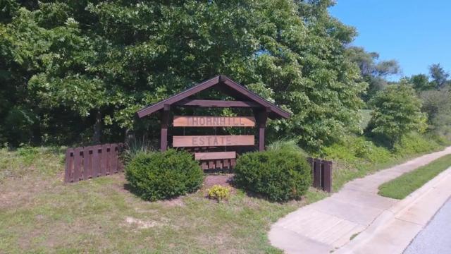 Lot 19 S S 13th Street, Ozark, MO 65721 (MLS #60124178) :: Team Real Estate - Springfield