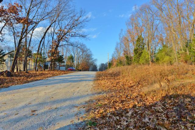Tbd Tate Road, Ridgedale, MO 65739 (MLS #60124430) :: Team Real Estate - Springfield