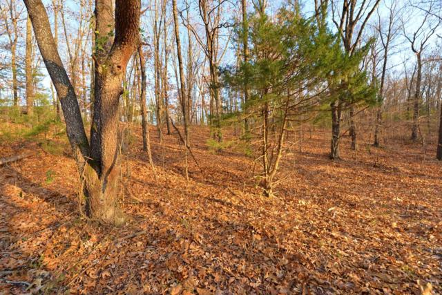 Tbd Red Bud Lane, Ridgedale, MO 65739 (MLS #60124440) :: Team Real Estate - Springfield