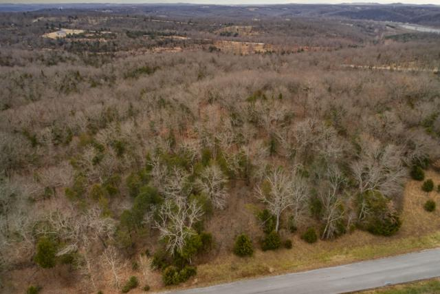 405 Long View Point, Forsyth, MO 65653 (MLS #60124703) :: Team Real Estate - Springfield