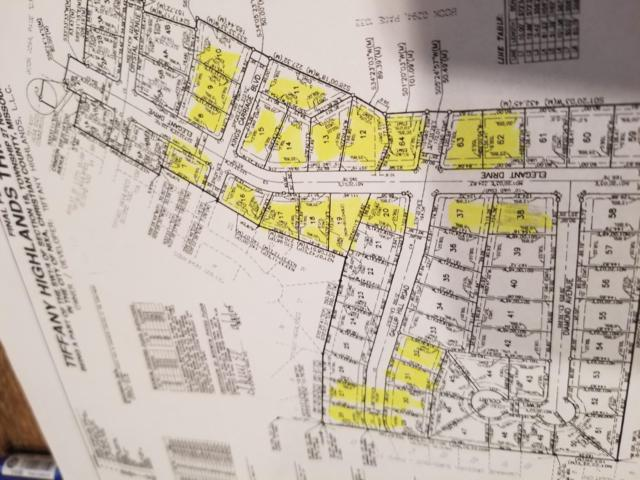 606 S Elegant Drive, Nixa, MO 65714 (MLS #60124780) :: Sue Carter Real Estate Group