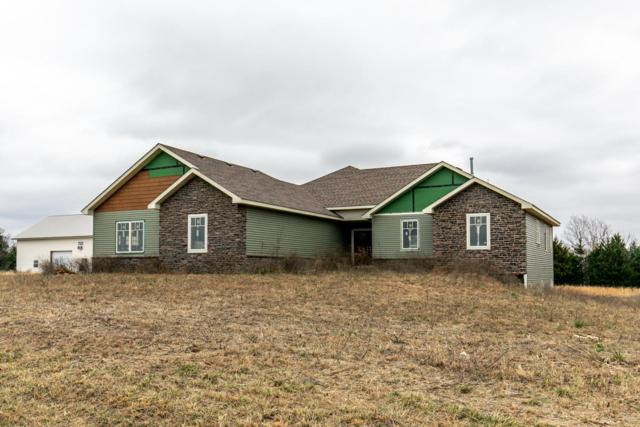 263 Village Drive, Marshfield, MO 65706 (MLS #60125011) :: Team Real Estate - Springfield
