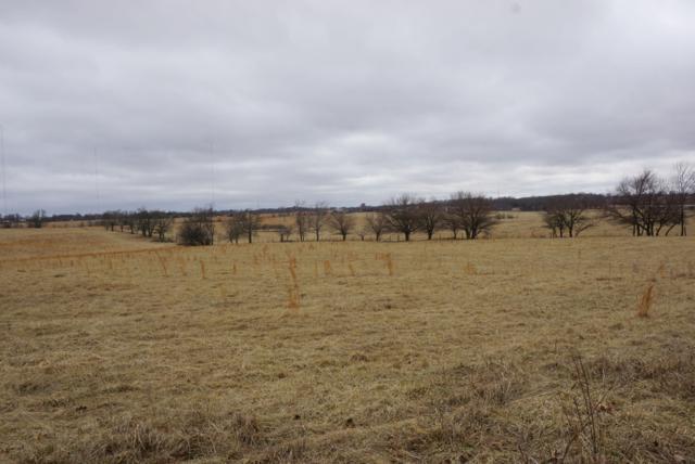 000000003 Meadowlark Road, Ozark, MO 65721 (MLS #60125098) :: Good Life Realty of Missouri