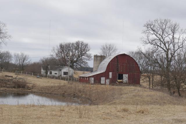 4 Meadowlark Road, Ozark, MO 65721 (MLS #60125099) :: Good Life Realty of Missouri
