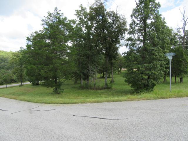 137 Arabian Way, Saddlebrooke, MO 65630 (MLS #60125154) :: Good Life Realty of Missouri