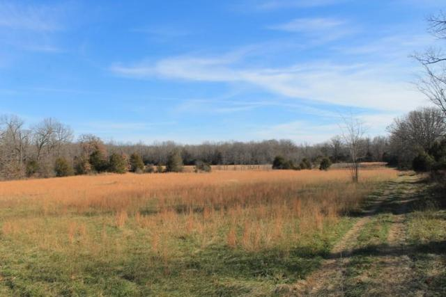 11824 County Road 8470, West Plains, MO 65775 (MLS #60125203) :: Good Life Realty of Missouri