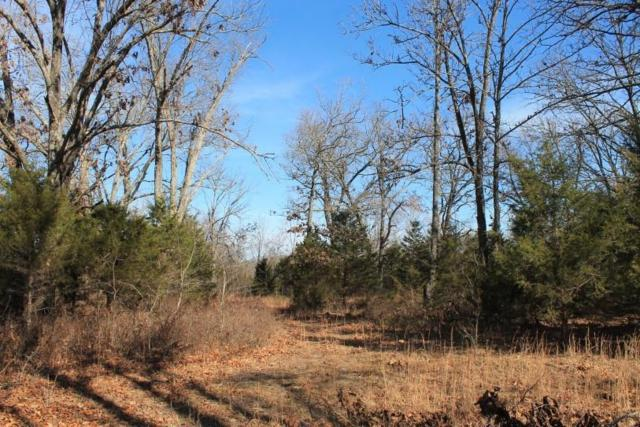11824 County Road 8470, West Plains, MO 65775 (MLS #60125209) :: Good Life Realty of Missouri