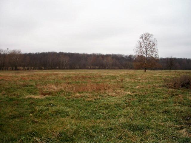 Tbd Farm Road 1040, Exeter, MO 65647 (MLS #60125249) :: Team Real Estate - Springfield
