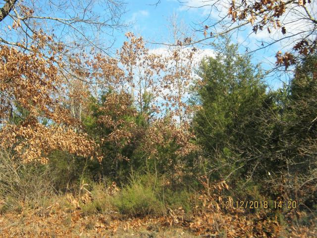 Tbd Oak Ridge Drive Lot 55, Shell Knob, MO 65747 (MLS #60125489) :: The Real Estate Riders