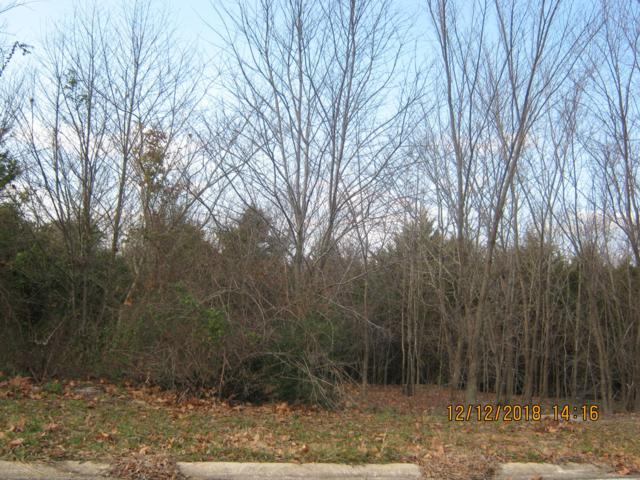 Tbd Oak Ridge Drive Lot 20, Shell Knob, MO 65747 (MLS #60125635) :: The Real Estate Riders