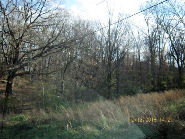 Tbd Oak Ridge Drive Lot 39, Shell Knob, MO 65747 (MLS #60125636) :: The Real Estate Riders