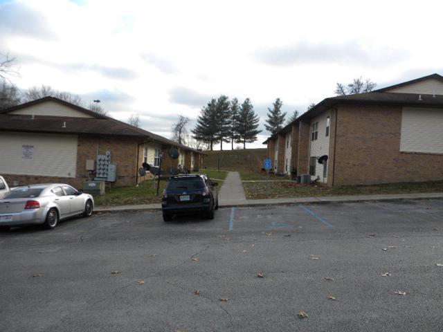 1450 Herschend Lane, Branson, MO 65615 (MLS #60125859) :: Team Real Estate - Springfield