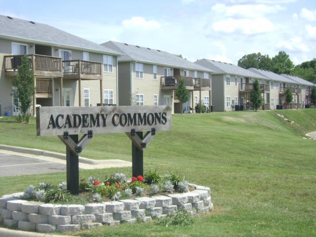 144 Humanity Lane A, Branson, MO 65616 (MLS #60125863) :: Team Real Estate - Springfield